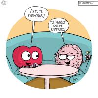 Cuando le preguntan al cerebro si se enamora.